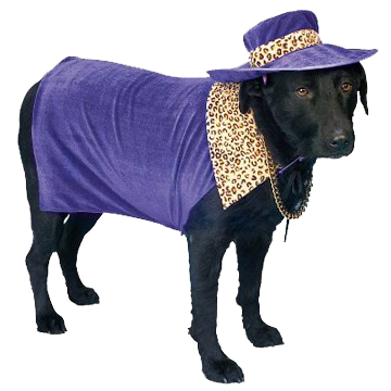 PIMP DADDY DOG Costume & HAT-PURPLE PANTHER