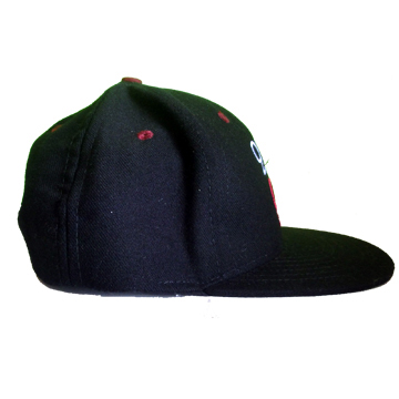 QUINTIN 20%666 -SEEKERS OF THE TRUTH- SNAPBACK CAP label