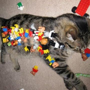 レゴ ピアス<br />LEGO PIAS 4 label